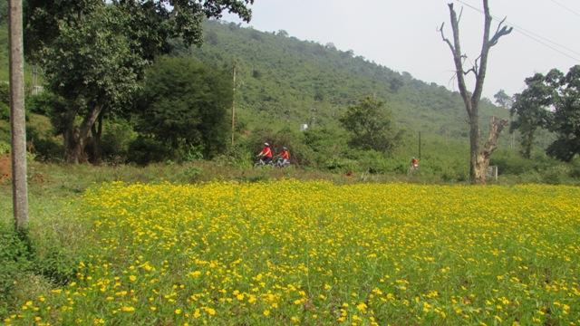 Bike Ride Nov 2014 - Riding - Hills.JPG